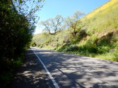 descend calaveras rd